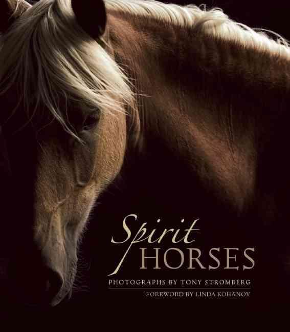 Spirit Horses By Stromberg, Tony (PHT)/ Kohanov, Linda (FRW)